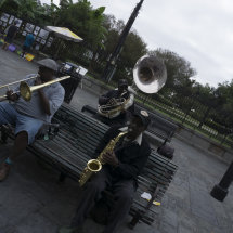 Street music in the garden
