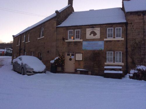 Childers in the snow