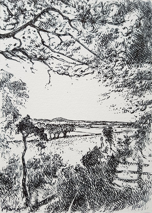 Towards Lochmaben. Contemporary Scottish landscape drawing. Original pen and ink drawing by Marcer Campbell