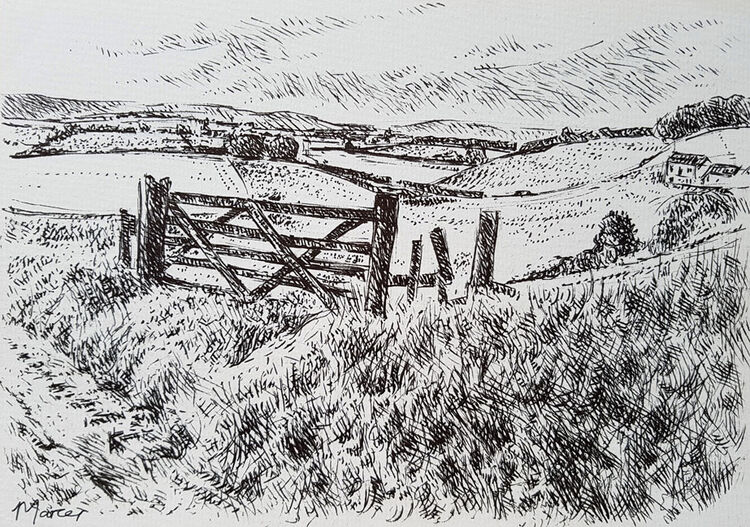 Lochside farm and Comfortland Hill. Contemporary Scottish landscape drawing. Pen and ink on cartridge paper