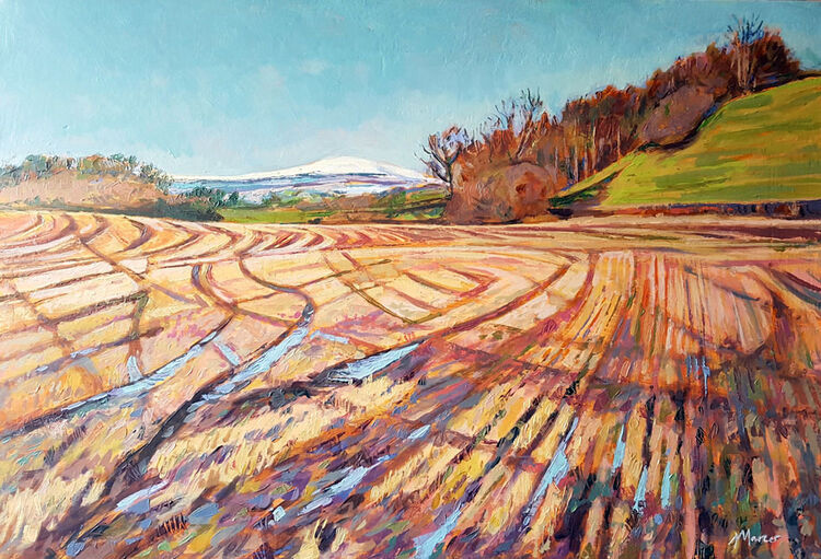 Forest of Ae under snow. Lockerbie. Dumfries and Galloway. Contemporary Scottish landscape painting. Acrylic on canvas. By Marcer Campbell