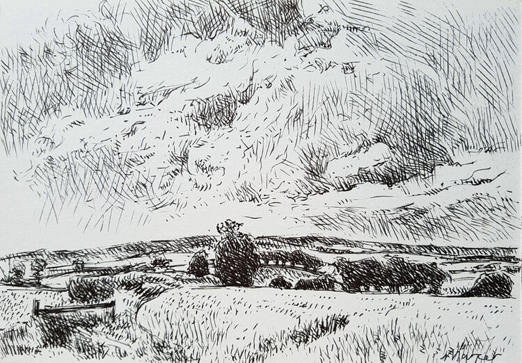 Summer view. Pip's Corner, Eskrigg. Contemporary Scottish landscape drawing. Pen and ink on paper by Marcer Campbell