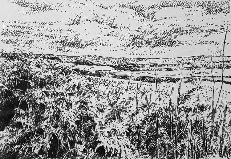 Bankend Road, Dumfries. Original contemporary Scottish landscape drawing. Pen and ink on cartridge paper by Marcer Campbell
