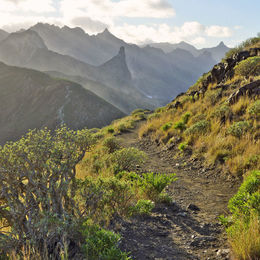 Hiking Trail Anaga Mountains Tenerife