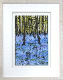 Bluebell Wood - Framed