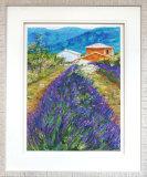 Lavender Field - Framed