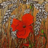 Poppy In The Corn