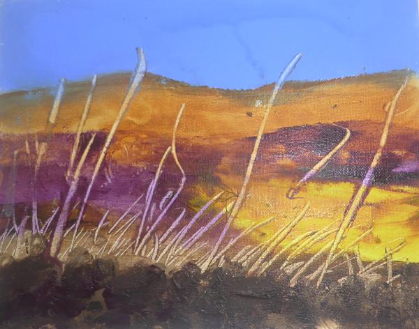 Moorland Gold