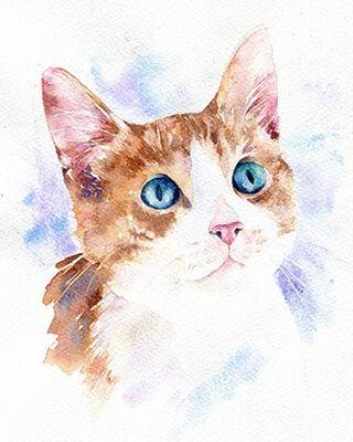 Cat watercolour portrait painting