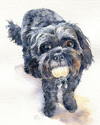 Dog watercolour portrait painting