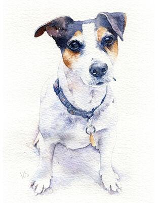 Dog watercolour portrait painting
