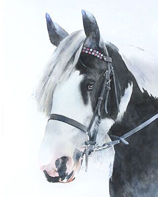 horse watercolour portrait painting