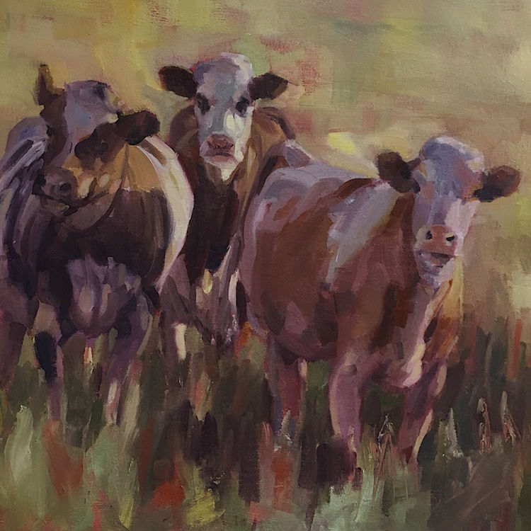 Sunlit Cows