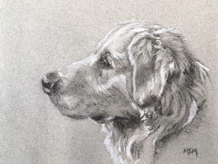 June 9th Pet Portraits £55 FULL 10am-4pm This is a new workshop, we will be using charcoal, black and white pastel on a midtoned paper, to capture your furry friend All materials will be supplied, all I ask is that you use large, clear reference photos