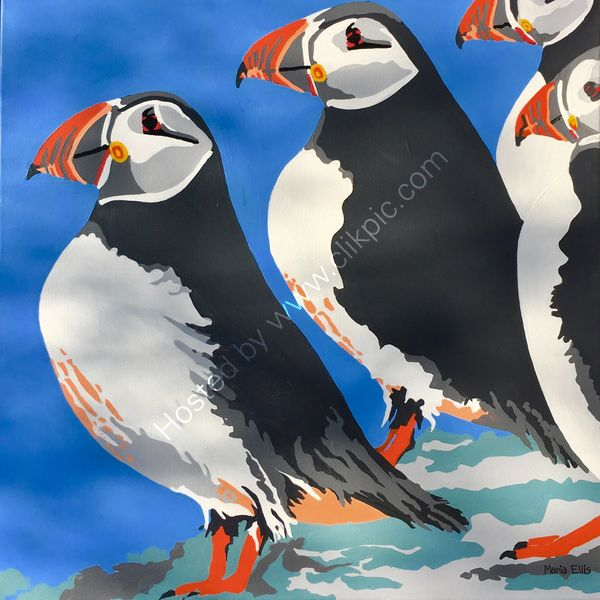 '...more Scilly Puffins'