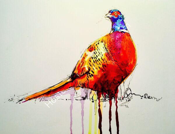 'A pheasant'