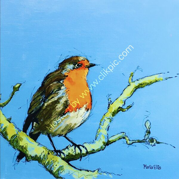 SPECIAL 'Mr Robin' cards 4 for £10
