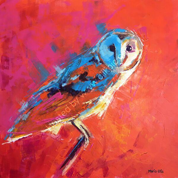 A bright barn owl