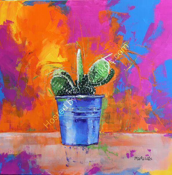 'Cactus firework fiesta'