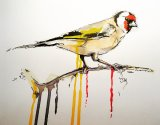 Goldfinch - SOLD