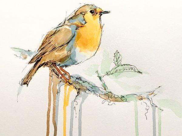 'Robin' Greetings card