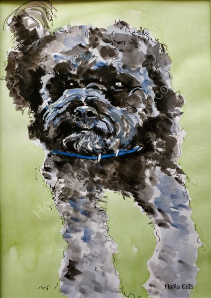 'Bertie' - a Christmas present commission