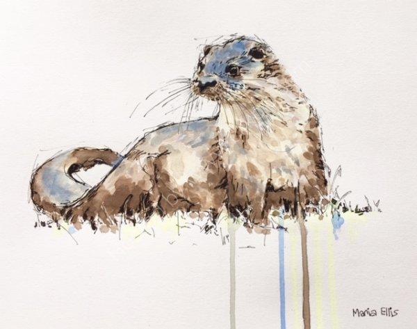 'Otter'