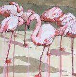 'La la la la pretty flamingos'