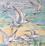 'Terns taking off'