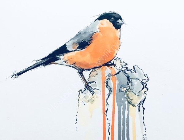'Bullfinch' Greetings card