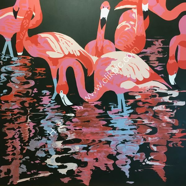 'Pretty Flamingos'