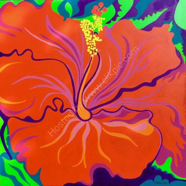 'Hibiscus'