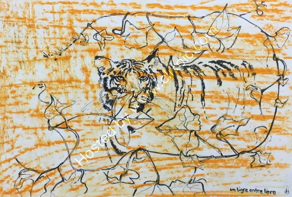 Un tigre entre liere