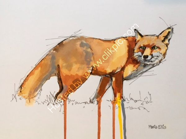 Foxy - Sold