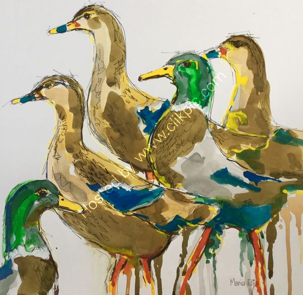 Quackers - Sold