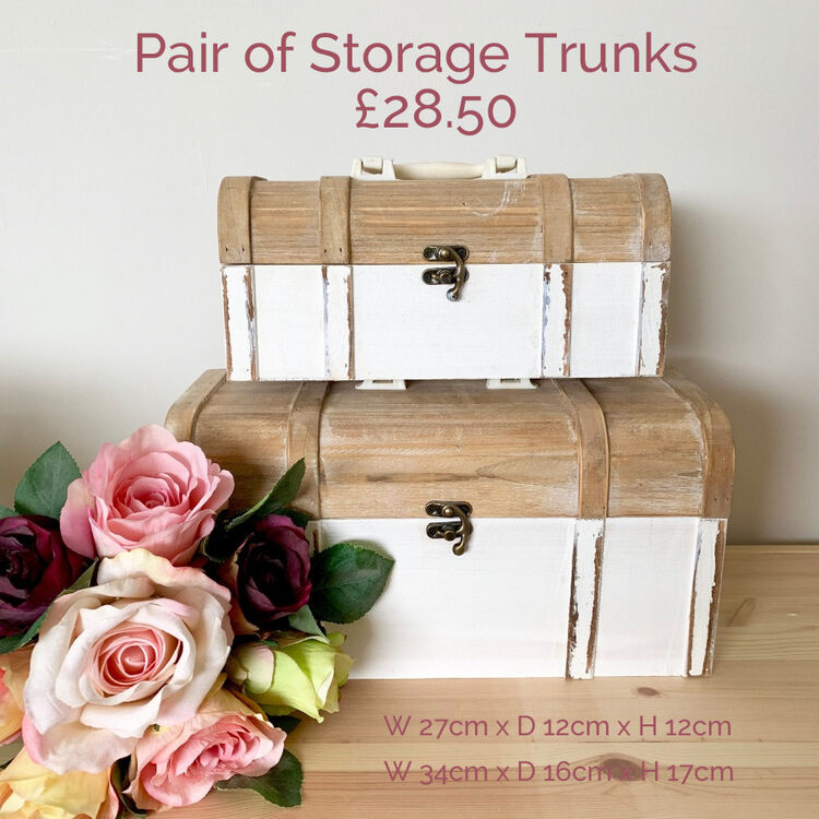 Storage trunks white