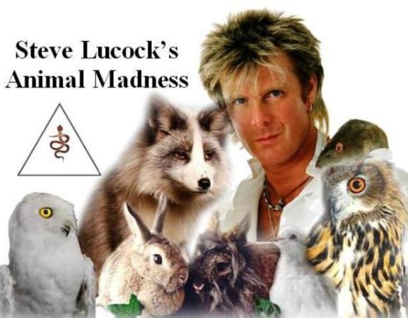 Steve Lucocks Animal Madness.