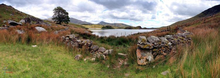 Llyn Dywarchen panorama.