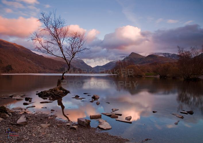 Llyn Padarn & the Lonely Tree.