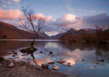 Llyn Padarn & the Lonely Tree.