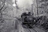 Vintage Fairlie hauled slate train.