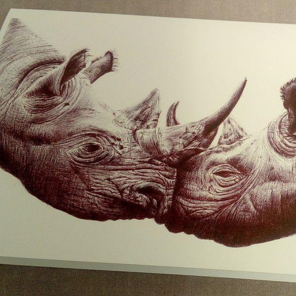 Two Rhinos