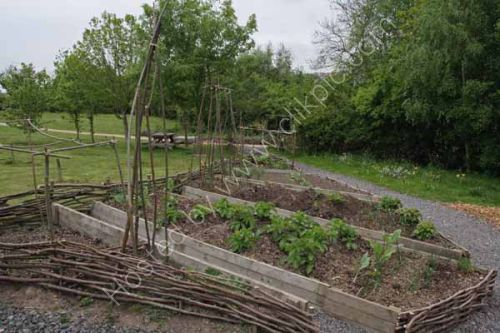 Vegetable beds in use