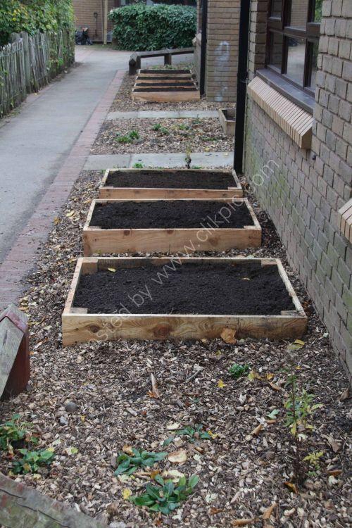 Vegetable plot project complete