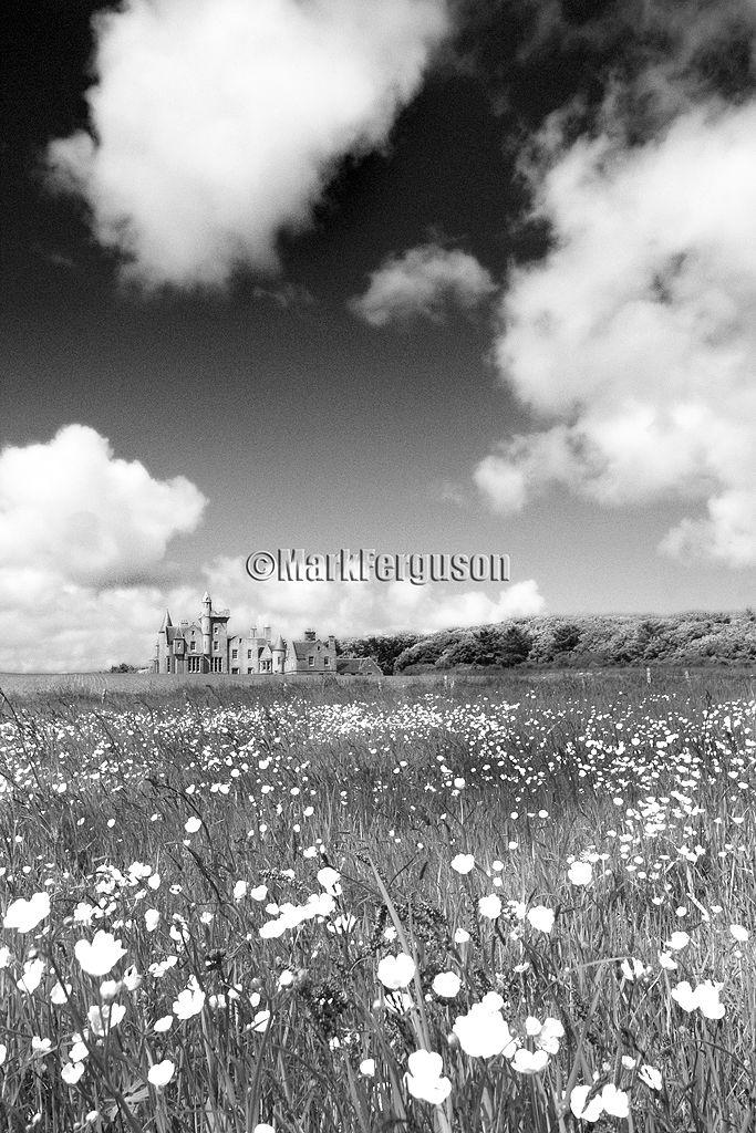 Balfour Castle in spring