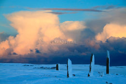 Ring of Brodgar in winter