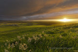 West Mainland sunset