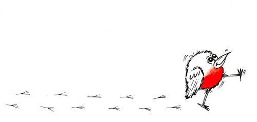 Robin Footprints 1