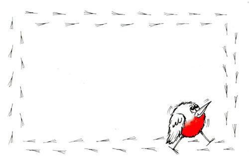 Robin Footprints 2.