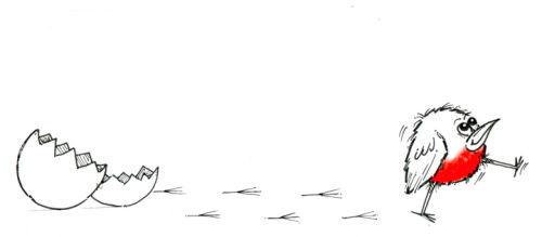 Robin Footprints 3.